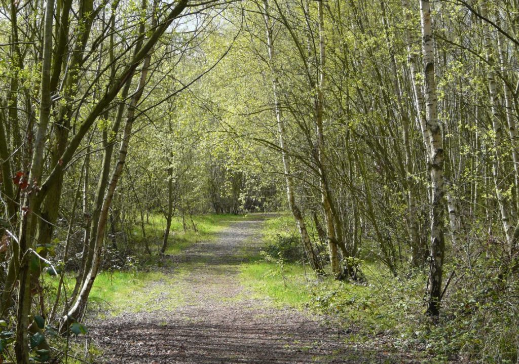 Fryston Country Trail