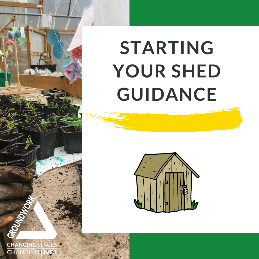 Starting your Shed Guidance