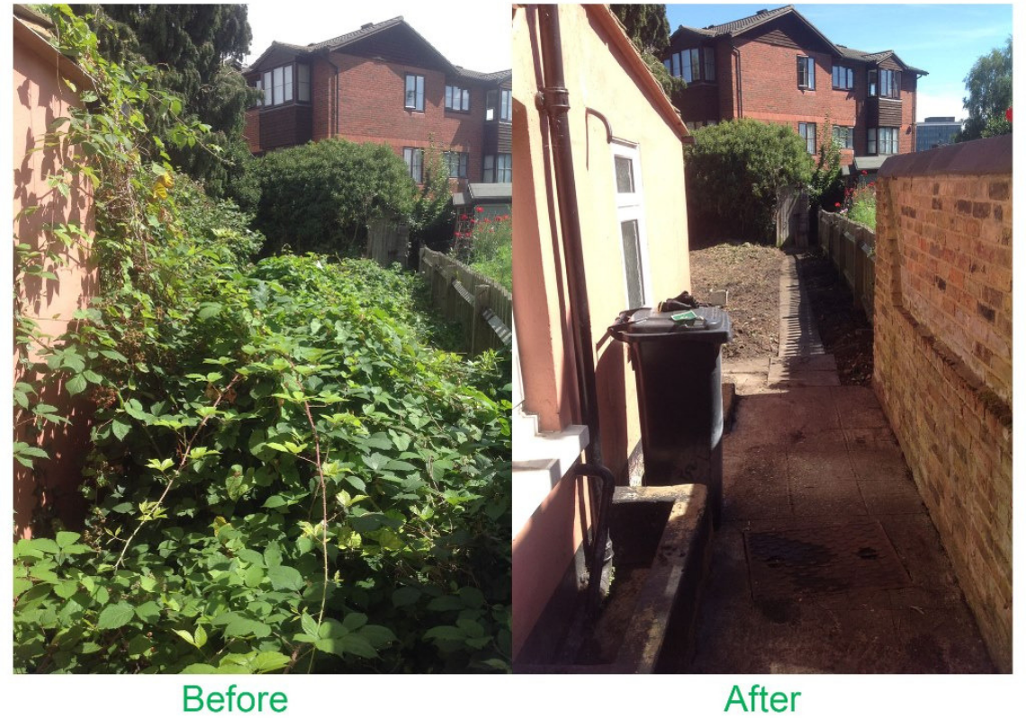 St Albans residents – is your garden overgrown?