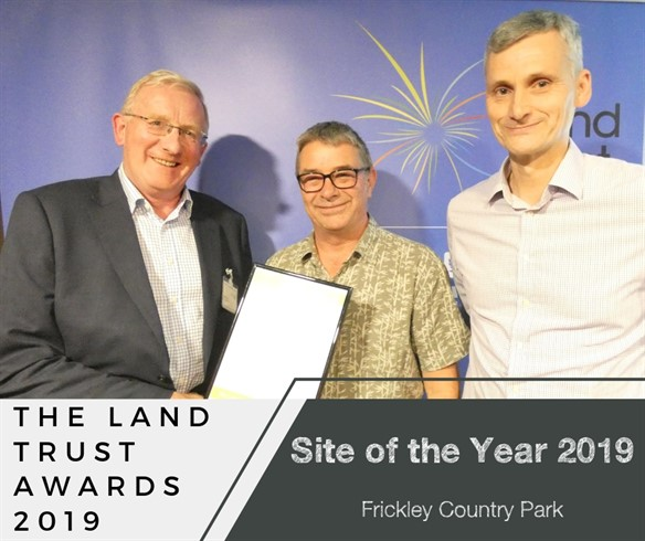 Site of the year awards 2019