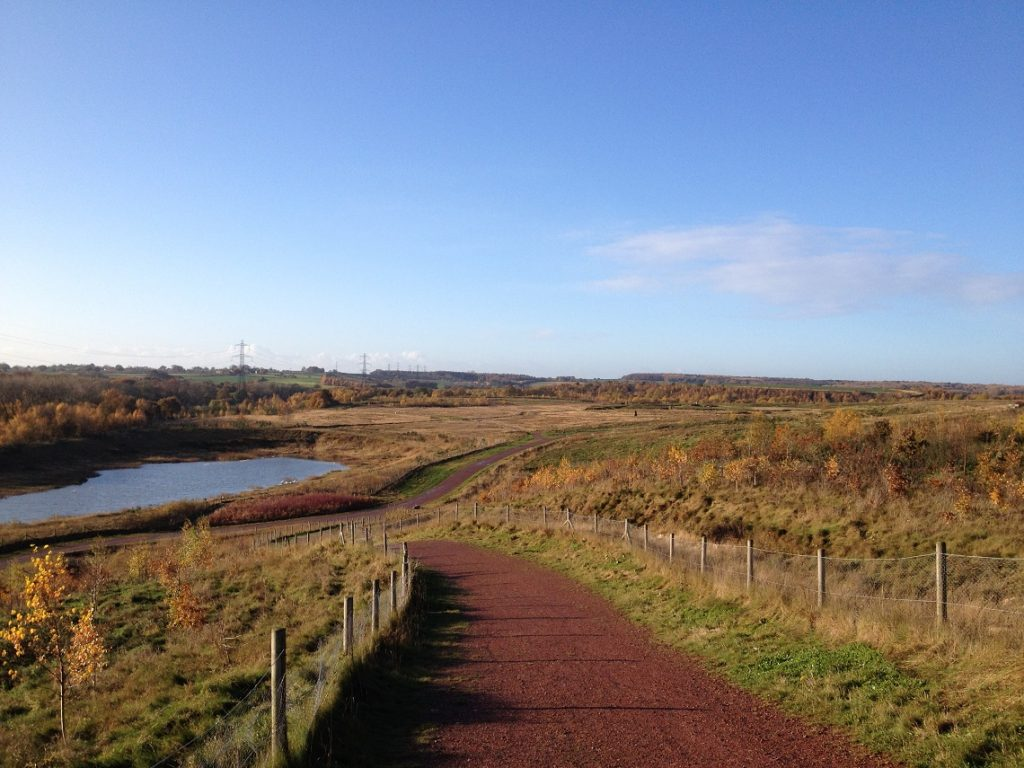 Frickley Country Park