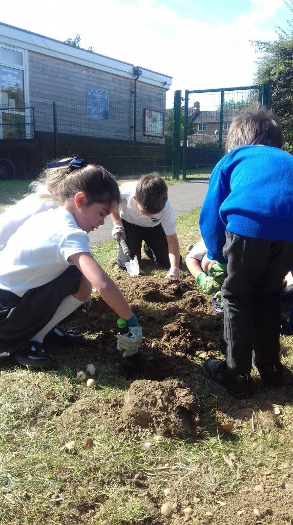 Homerswood Primary