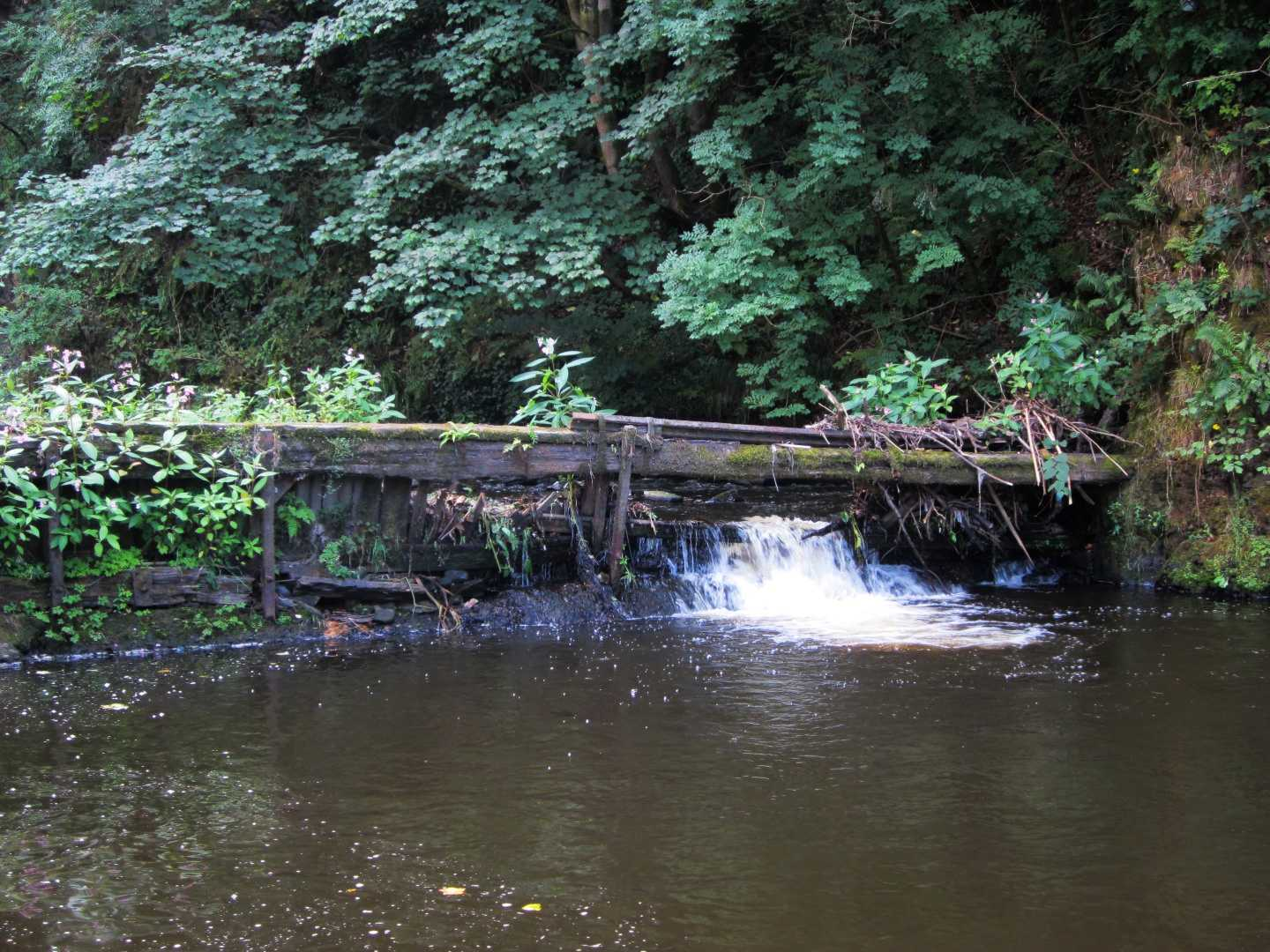 Improving the quality of the River Irwell