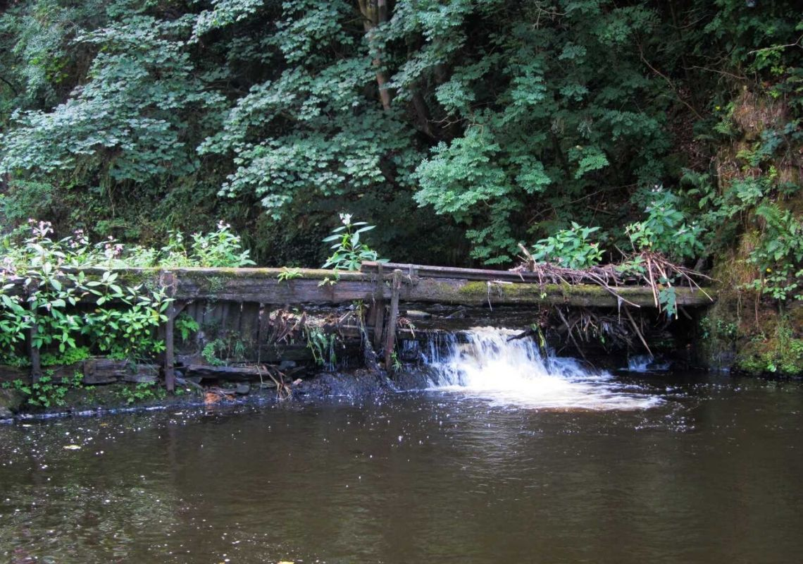 Case Study: Weir removal project to improve the quality of the River Irwell