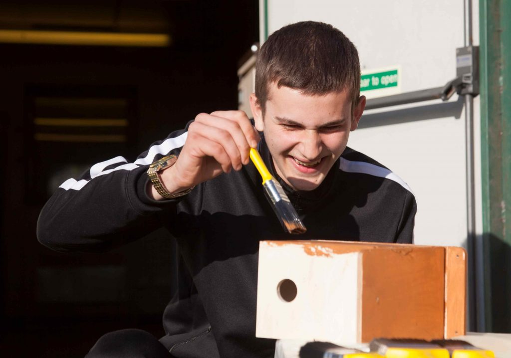Teenage box painting a birdbox