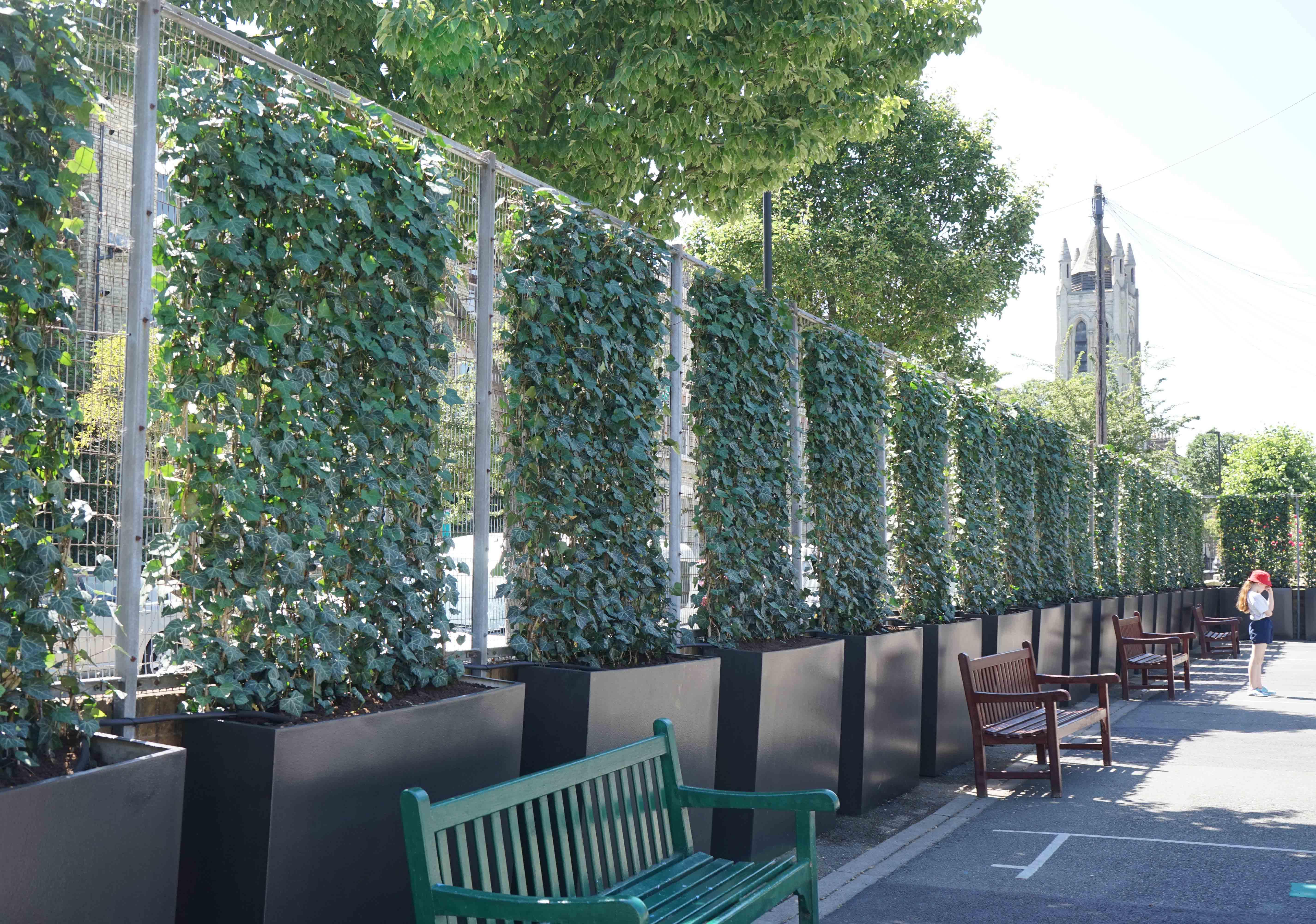 Nature's Helper Walls