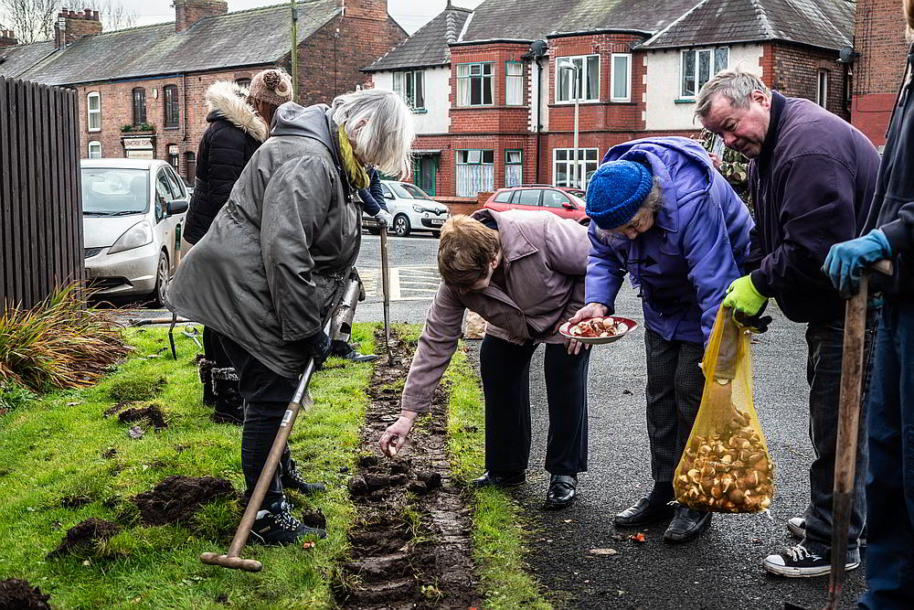 People planting bulbs in Northwich