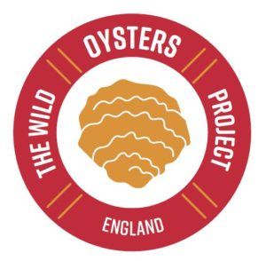 Wild Oysters England