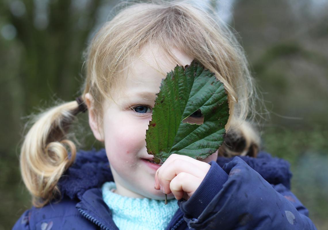 BLOG: Tackling air pollution near schools