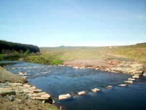 A stretch of river